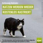 kastrationsaktion_SH.jpg
